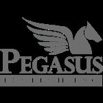 PegasusFintech - MLG Blockchain